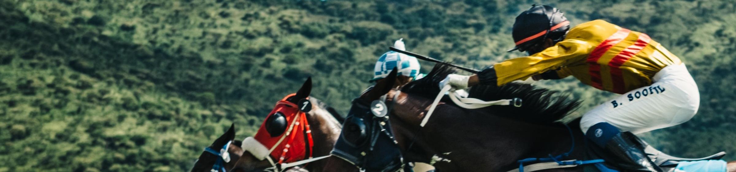 Jockies on Horses racing
